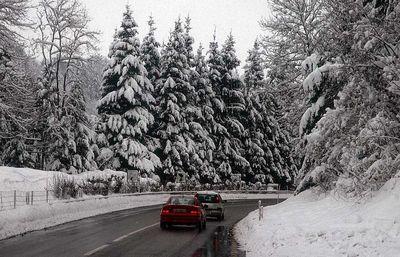 Winter-road-lk5