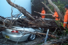 Storm_crushed_car_fairfield_2003[1]