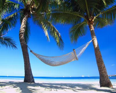 Paradise-In-The-Tropics